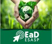 EAD: EDUCAÇÃO AMBIENTAL